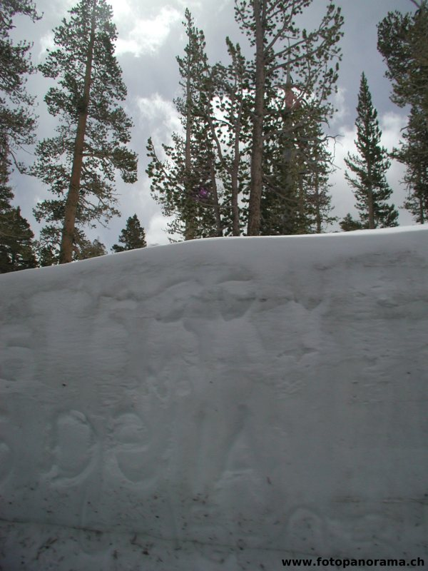 Wall of Snow